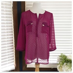 The Limited Fuchsia Swiss Dot Blouse Size Large